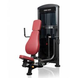 PROFESSIONAL LATERAL RAISE TRAINER MARBO SPORT MP-U228