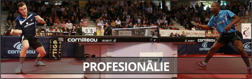 Profesionālie